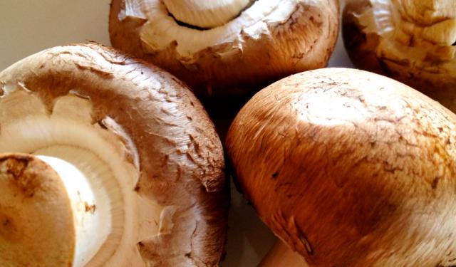 Portabella Mushrooms Power Up Cell Phone Batteries